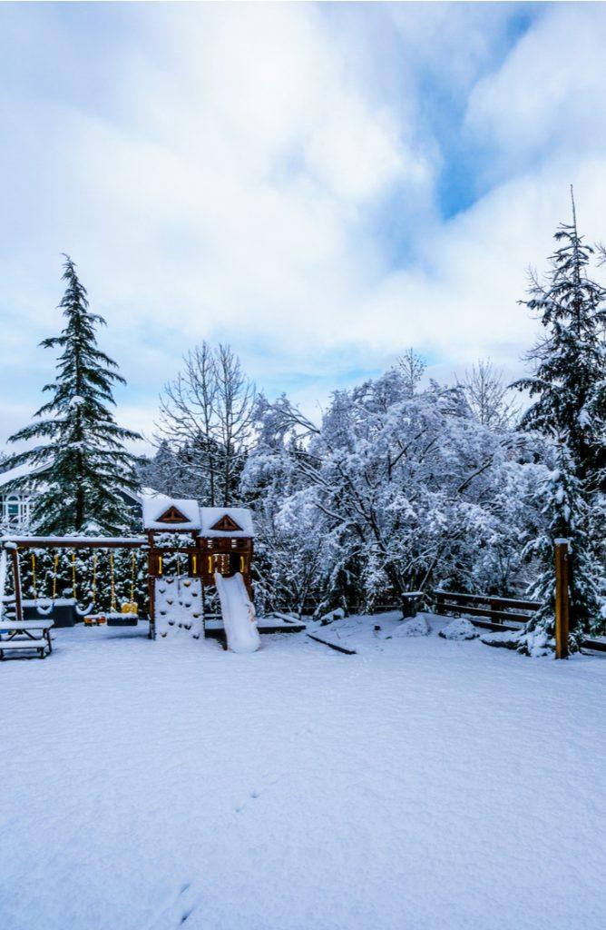snow cream | snow | ice cream | snow day | snacks | treats