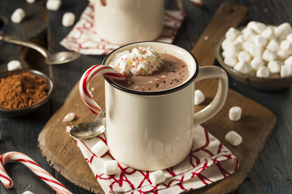 There's nothing better than a delicious cup of hot chocolate in the winter. If you're having a hot chocolate bar party, you need to know these top 10 hot chocolate bar toppings!