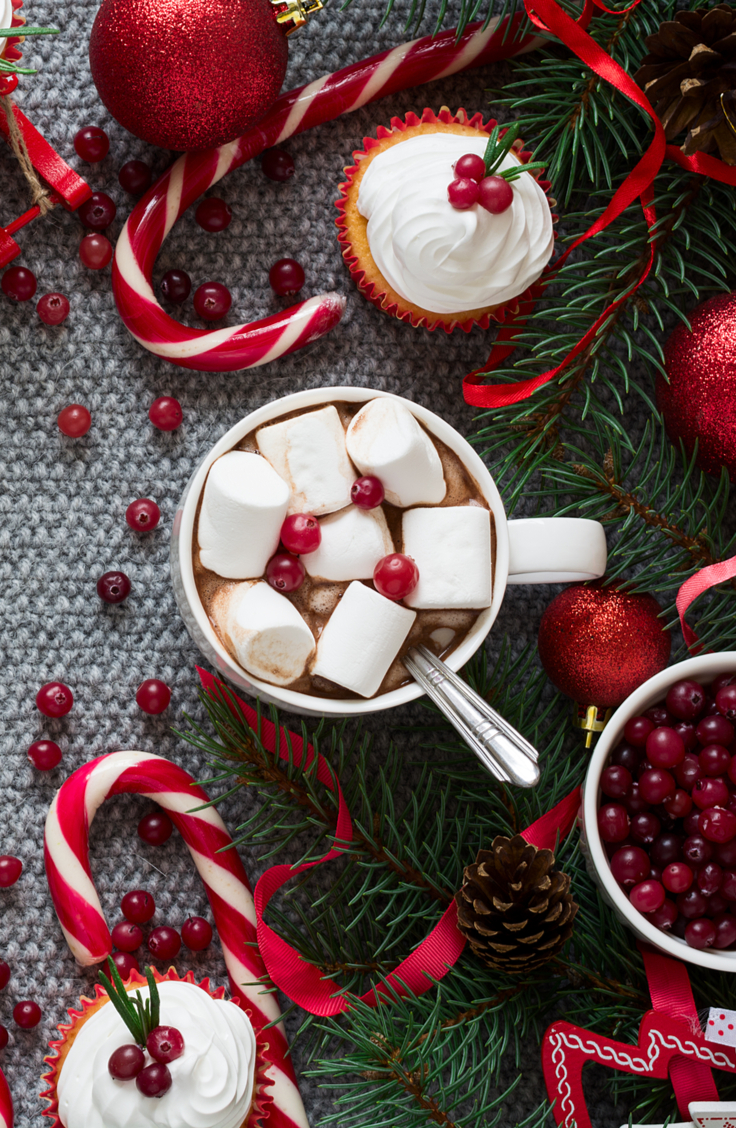 Is there anything better than a hot chocolate bar in the winter? These top 10 hot chocolate bar toppings will make your hot chocolate bar epic.