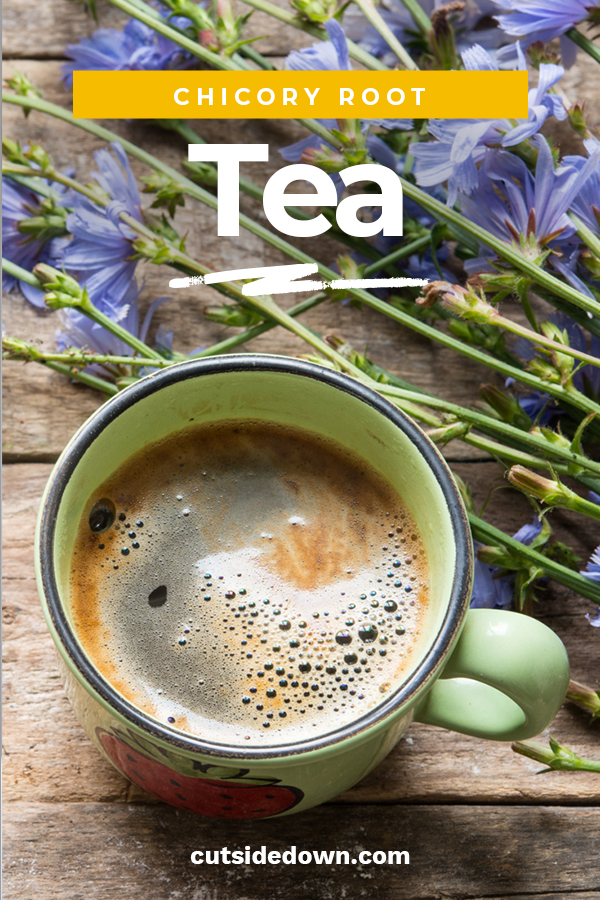 I am a big fan of tea. Not a big fan of coffee because of the caffeine. If you are looking for a caffeine-free alternative, chicory root tea is a great resource. Learn about the many benefits this tea has by reading this post. The rich flavor is even better than coffee (IMHO). #coffeealternatives #chicoryroottea #caffeinefreetea