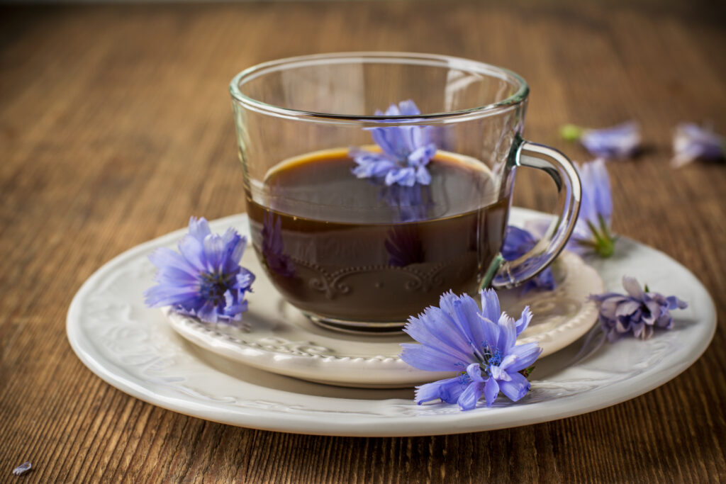 chicory root tea