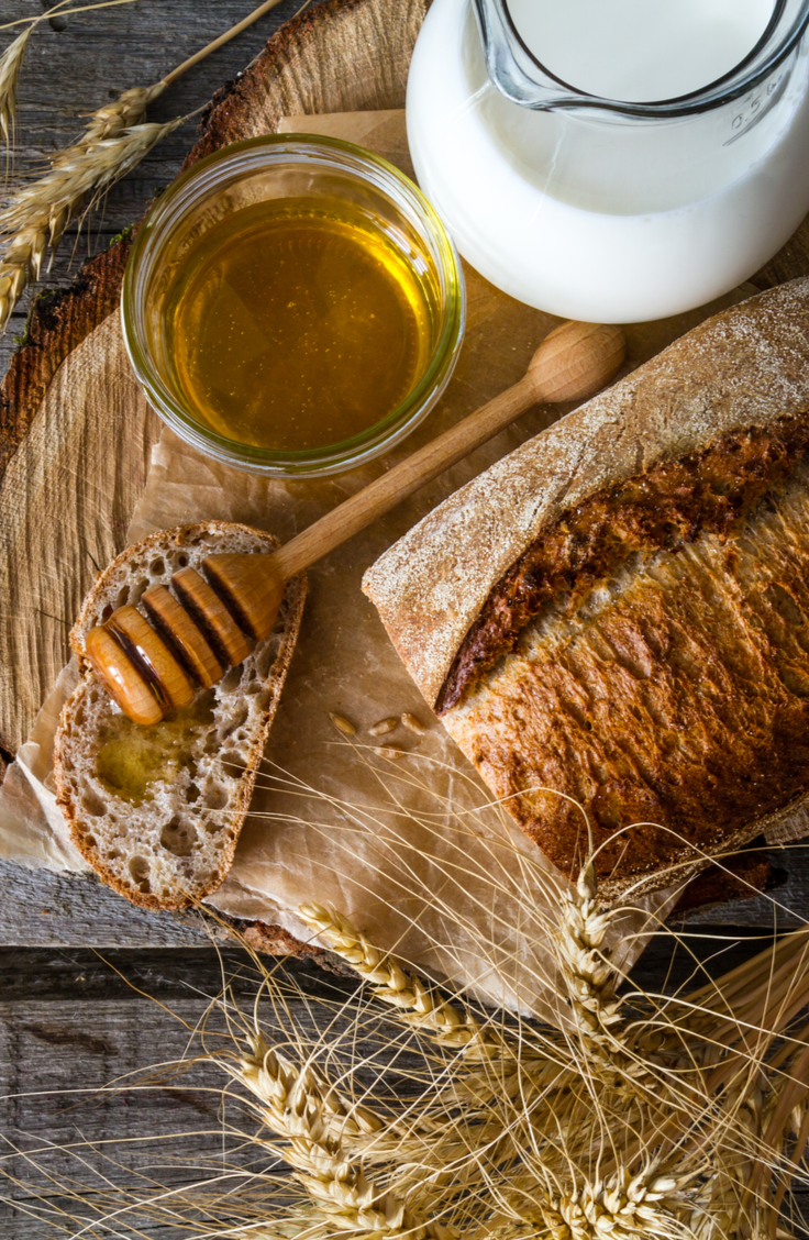 Out of yeast and have a hankering to bake some fresh bread? I've gathered up some of the best yeastless bread recipes to save the day. This honey wheat bread is to die for!