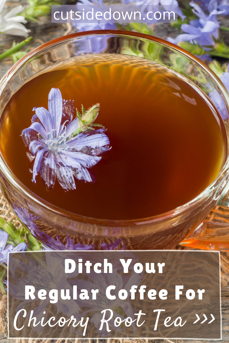 Cutsidedown.com knows all about food and drink. Get creative in the kitchen with loads of tasty ideas. If you're a bit of a caffeine addict and want to cut back on your intake without losing the great taste of coffee, try chicory root tea!